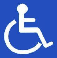 Blue Badge Logo